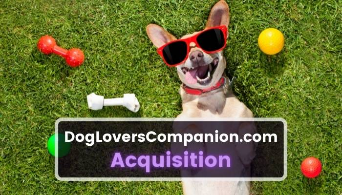Dog Lovers Companion Acquisition